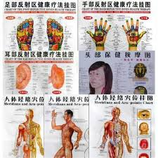 Whole Body Chart Details About Whole Body English Acupuncture Meridian Acupressure Points Poster Chart Wall Map