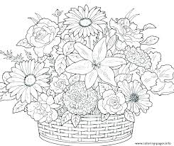 Coloring Pages Free Poppy Flower Coloring Pages Printable Improved