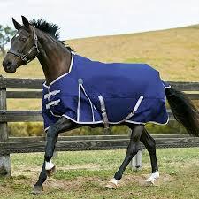 01 horse riding horse riding comfitec essential lite std weatherbeeta sadlery and tack