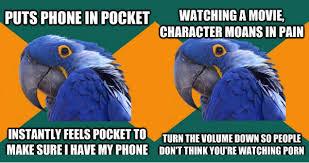 paranoid-parrot-meme - via Relatably.com