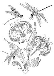 Adult Colouring Pages Of Dragonfly And Flower Thetangledpeacock