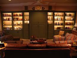 interior cabinet lighting. cabinet lighting traditionallivingroom interior