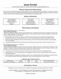 Sales Marketing Resume Reference Sales Amp Marketing Resume Format