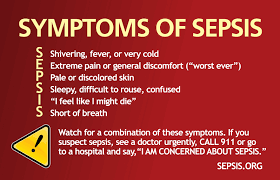 Image result for sepsis rash