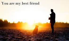 My Best Friend Wallpapers Group (52+)