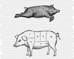 2 Swine Pig Butcher Meat Chart Vintage Clip Art Download Digital Printable Graphic 0334