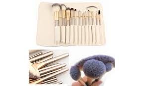 professional makeup brush collection with storage case 13 pc
