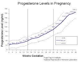 Hormone Levels During Pregnancy Chart Www