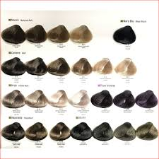 Alfaparf Evolution Hair Color Chart New Alfaparf Yellow Hair Color Photos Of Hair Color
