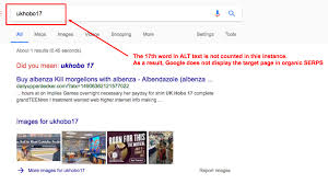 How Many Words In IMAGE ALT Text For Google SEO? | Best Practices