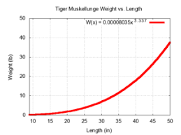 Northern Pike Age Chart Tiger Muskellunge Wikipedia