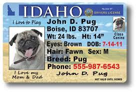 Drivers License License Drivers License Idaho Idaho Drivers Idaho