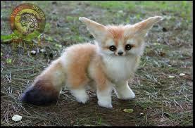 baby fennec fox. Contemporary Fennec Handmade Fully Poseable Baby Fennec Fox By WoodSplitterLee  For Fox C