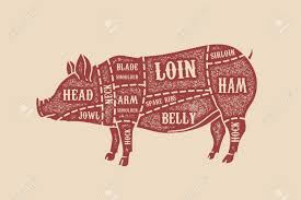 Pig Anatomy Chart 67 You Have To Try Diagram Of Pigs