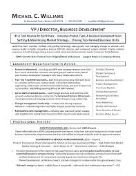Application Development Manager Resume Business Development Resume ...