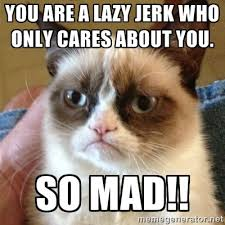 You are a lazy jerk who only cares about you. So mad!! - Grumpy ... via Relatably.com