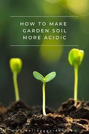 make your soil more acidic organically