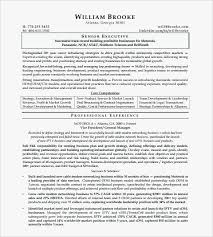 Professional Resume Formats Unique Ceo Resume Sample Professional R Sum Chief Executive Officer