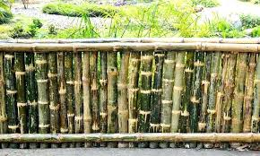 Chain Link Fence Lowes Amazing Bamboo Fence Panels Also Bamboo Fence