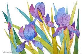 irises in watercolor