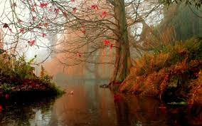 Best Nature Mac Wallpapers Free HD ...