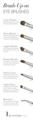 using the right brushes will make a difference when applying eyeshadow limelight by alcone