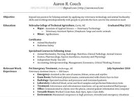 Perfect Resume Delectable Your All In One Guide To Building The Perfect Resume Perfect Resume