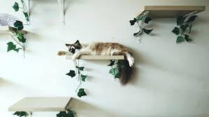 wall mount cat tree modern wall mounted cat tree furniture shelves for wall mounted cat tree