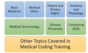 Types Of Medical Certifications Overview Of Medical Coding Certification Classes Medical Billing