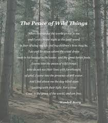 Forest Quotes Interesting The Peace Of Wild Things Wendell Berry [48 × 48] [OC
