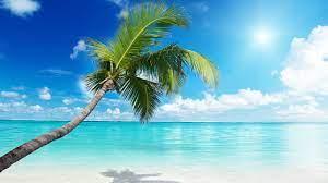 Beach Wallpaper 4k Desktop - Images