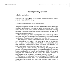the respiratory system gcse science marked by teachers com document image preview