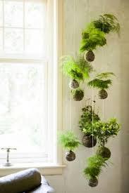 ... Incredible Unique Hanging Planters 12 Unique Hanging Plants ...