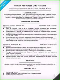 Real Life Resume Examples Extraordinary Life Insurance Agent
