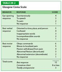 Glasgow Coma Scale Assessment Chart The Glasgow Coma Scale Gcs For First Aiders Glasgow Coma