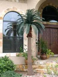 s fake palm trees for outside artificial outdoor uk