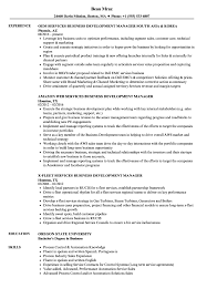 Business Development Manager Resume Services Business Development Manager Resume Samples Velvet Jobs 34