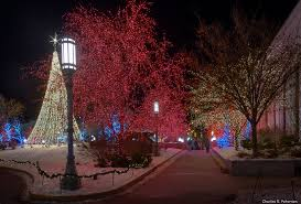 Image result for temple square lights