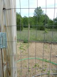 garden chicken wire fence ideas. i garden chicken wire fence ideas