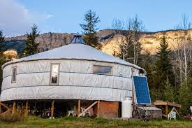 ... To Our Sailing One, Replace The Bear With A Shark. But Instead Of  Oceans They Have Mountains. They Are Our Mountain Yurt Family, And We Love  Them.