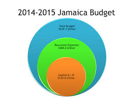 Jas Budget 2014 In A Nutshell Dig Jamaica