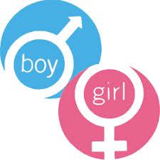 Baby Gender Predictor