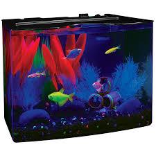 Fun Fish Tank Decorations Amazoncom Tetra 29005 Glofish Aquarium Kit 3 Gallon Aquarium
