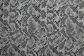 Snake Skin Pattern Gorgeous Bold Snake Skin Classy Gauges