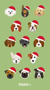 A collection of the top 49 doge phone wallpapers and backgrounds available for download for free. Christmas Dog Phone Wallpaper Dog Phone Christmas Dog Dog Wallpaper