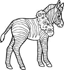 Small Picture Popular Zebra Coloring Pages KIDS Design Galle 1431 Unknown