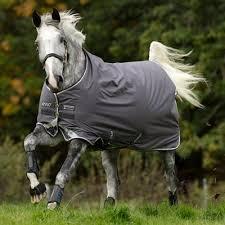 Jacket Waterford Crw