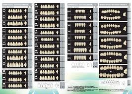 Denture Bourke Dental Supply