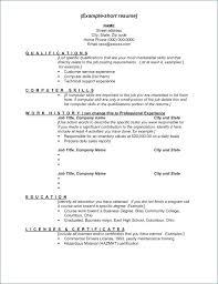 General Resume Skills Examples Job Resume Template Elegant Resume