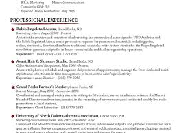 Write Resume Online Free Resume Template